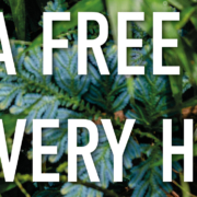Get a Tree for Free for every Hoodie