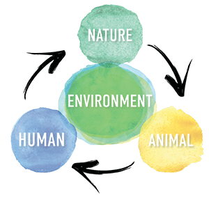 Human nature animal environment Mission Project Wings